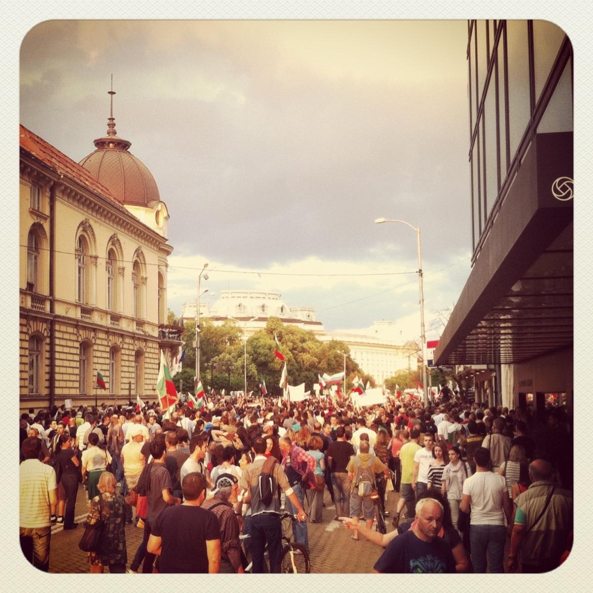 протест 2013