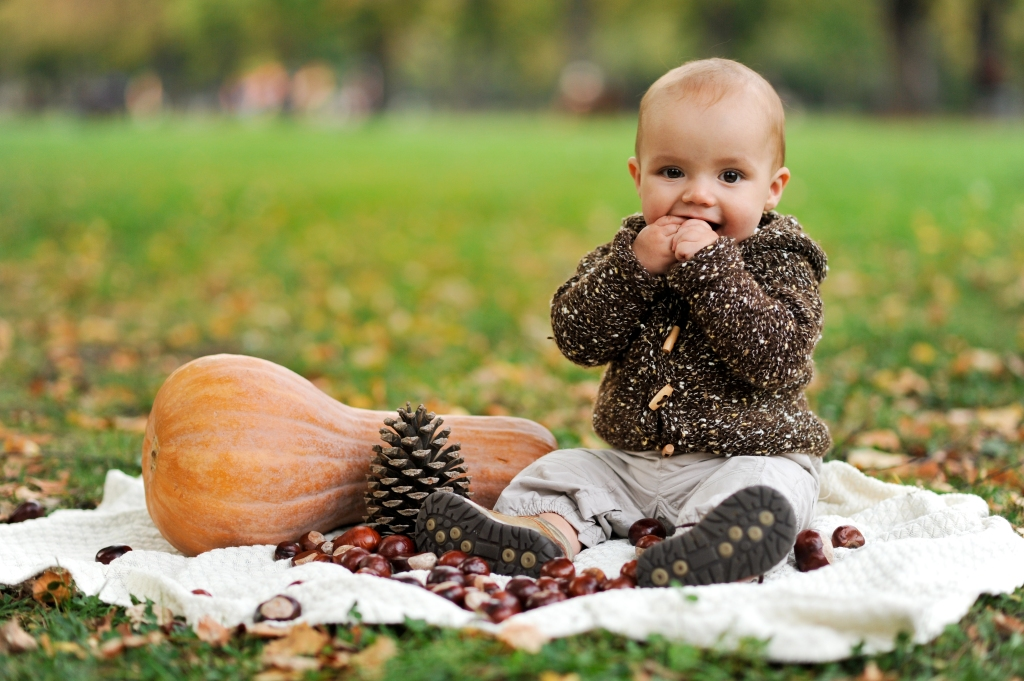 есенни декорации с тиква, кестени, шишарки
